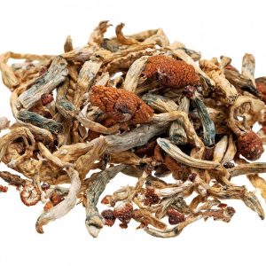 Buy psilocybin Online, mushroom for sale, mushrooms for sale,magic mushrooms for sale, psilocybe cubensis for sale